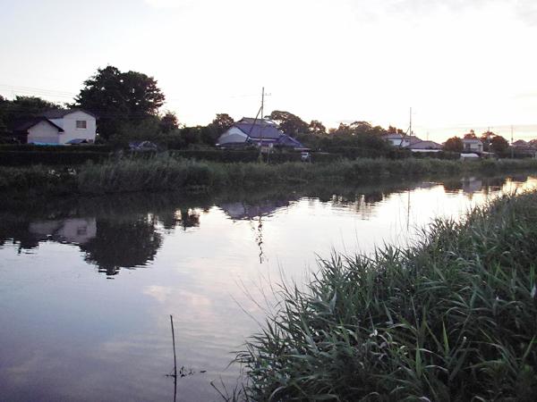 Dawn01